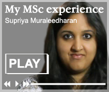 MSc in Finance and Management - watch video